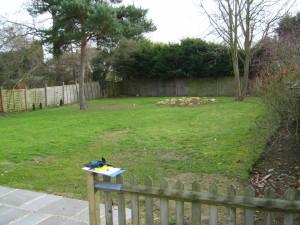 Round in Circles - park-langely-before-garden