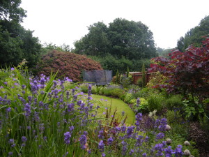 Garden Kitchen - peeking-through