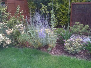 Modern & Traditional Meet - plant-borders