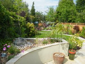 Artist's Garden - plants-and-pots