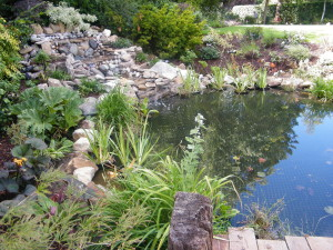 Country Garden with Natural Water Course - pond-planting