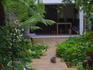 Lush Tropical - sv207248