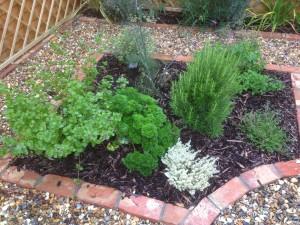 Croquet Anyone? - shoreham-herbs