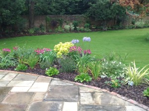 Croquet Anyone? - shoreham-patio-and-plants