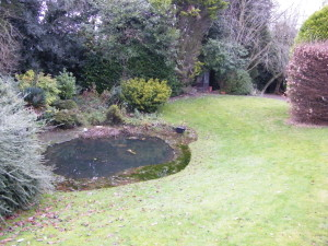 Country Garden with Natural Water Course - the-old-pond