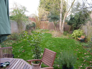 Doctor's Orders - the-old-streatham-garden-2