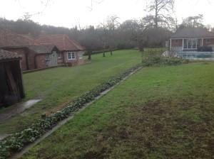 Croquet Anyone? - the-former-garden