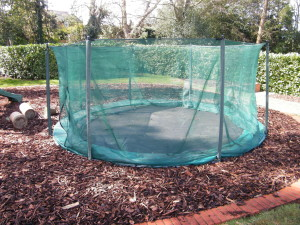 To the Manor Born - the-new-trampoline