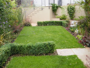 Modern & Traditional Meet - topiary-in-greenwich