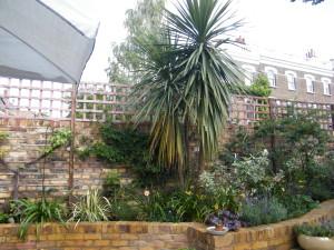 American Dream - tropical-garden