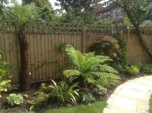 Artist's Garden - tropical-garden-beckenham