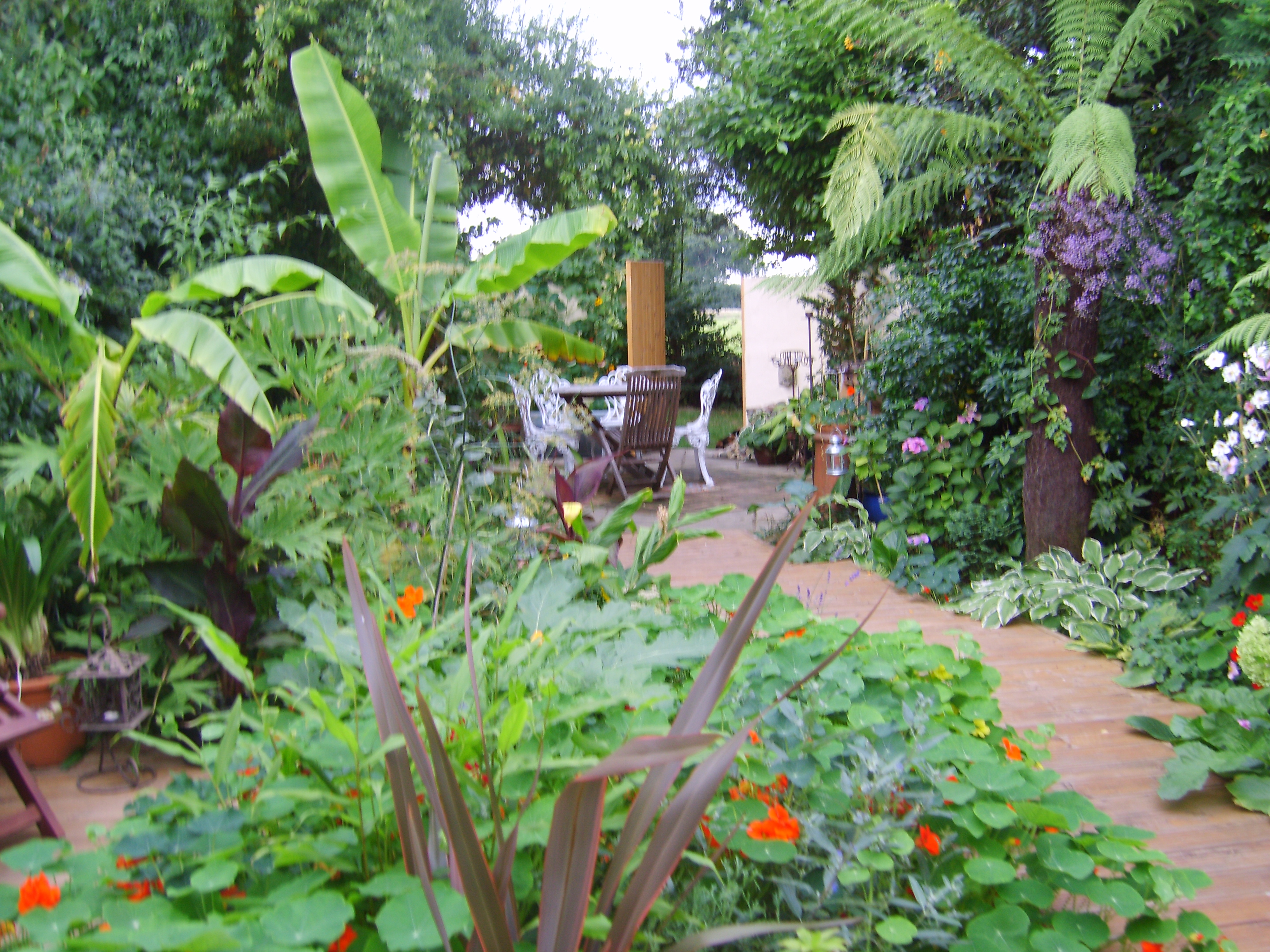 Beautiful Tropical Garden Ideas Uk Inside Inspiration
