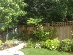Artist's Garden - tropical-plants-beckenham