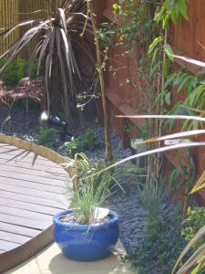 Small Modern Garden - uxbridge-plants