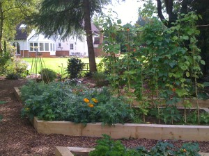 Country Garden with Natural Water Course - vegetable-patch