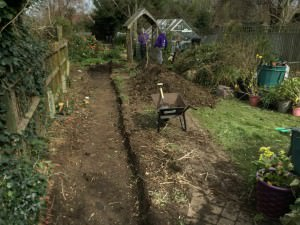 Long Garden in Surbiton - digging-it-up