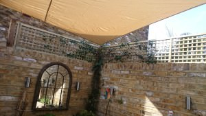 Rear garden in Richmond - the-finished-article