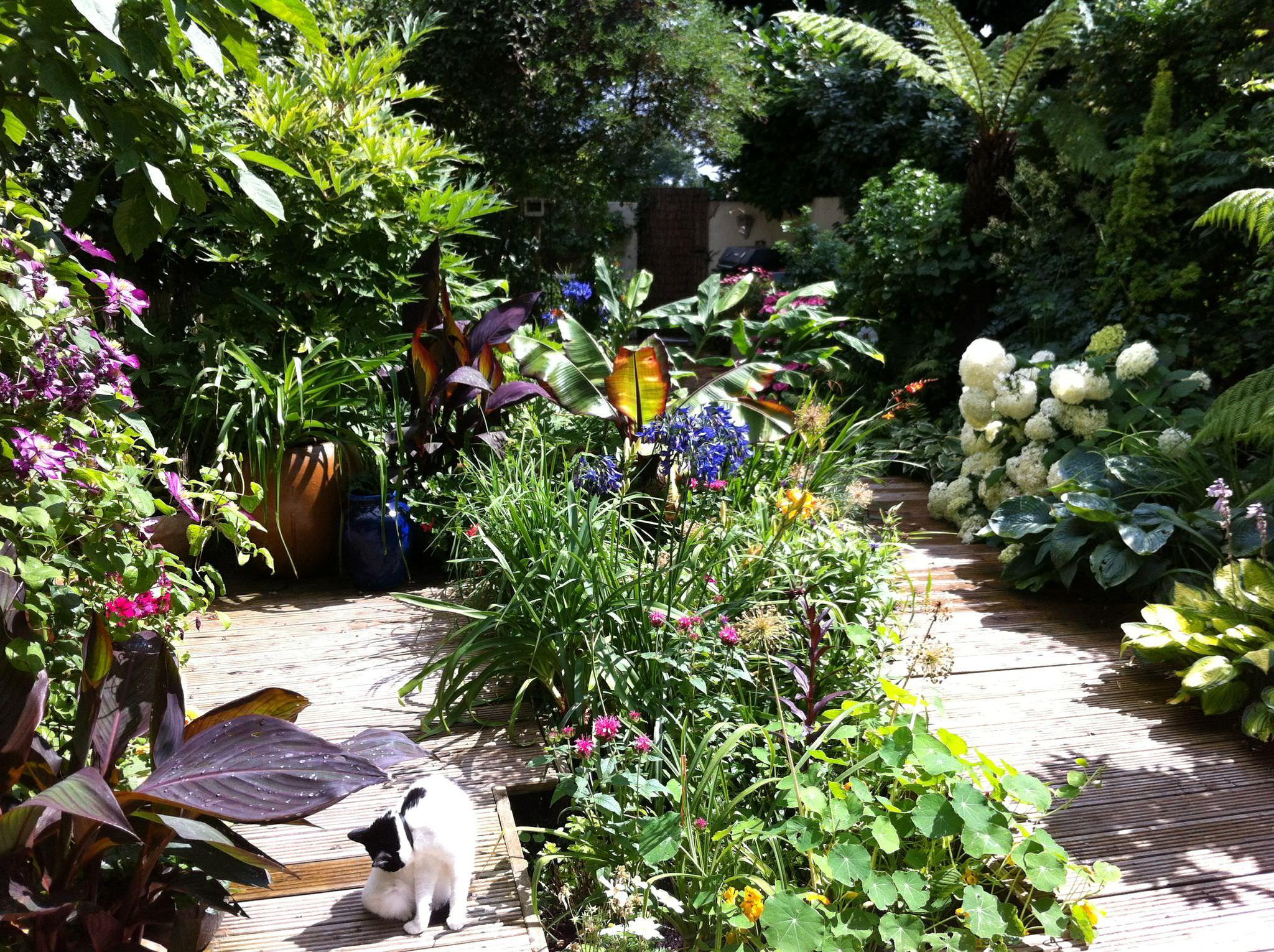 Contact london garden design services floral and hardy for Garden design services