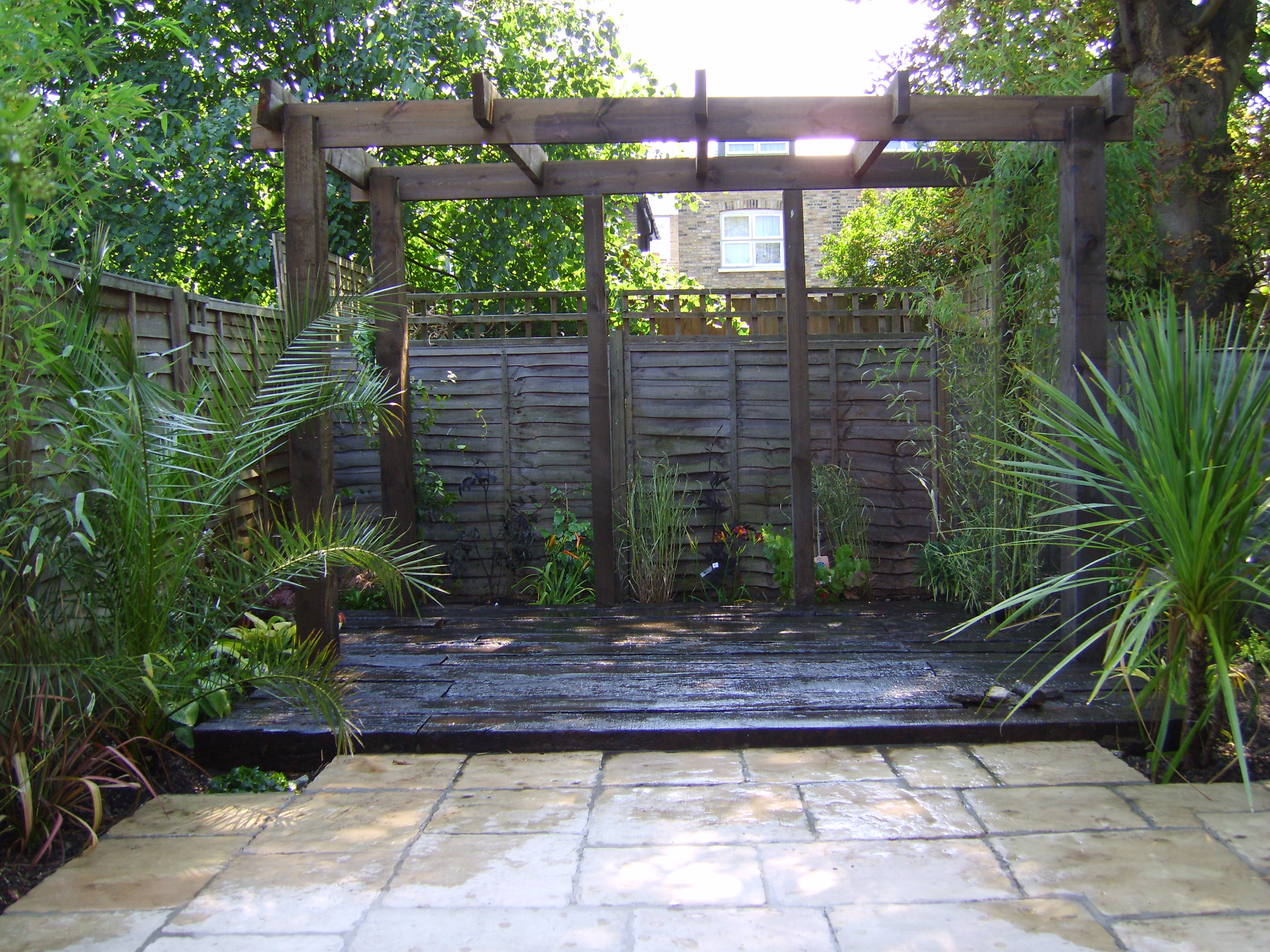 The latest blog from our garden designer on tropical gardens