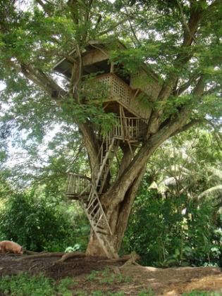freepik treehouse