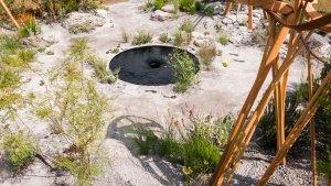 RHSNear-Future-Garden