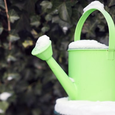 Watering can covered with snow