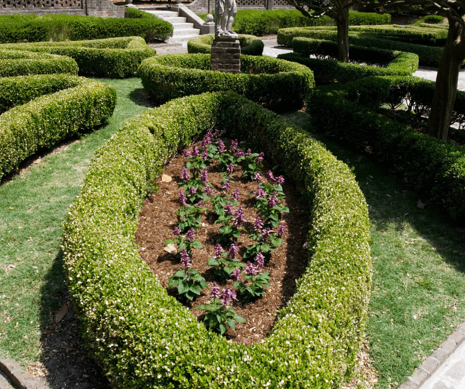 flowerbed with bushes and a statue in the background