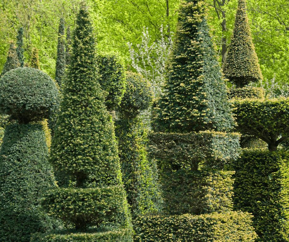 british traditional garden